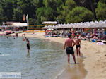 The mooie beach of Koukounaries - Skiathos - Photo 4 - Photo JustGreece.com