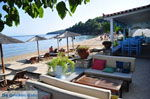 JustGreece.com Achladies | Skiathos Sporades | Greece  Photo 1 - Foto van JustGreece.com