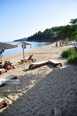 Achladies | Skiathos Sporades | Greece  Photo 2 - Photo JustGreece.com