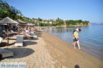 JustGreece.com Achladies | Skiathos Sporades | Greece  Photo 4 - Foto van JustGreece.com