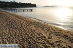JustGreece.com Achladies | Skiathos Sporades | Greece  Photo 11 - Foto van JustGreece.com