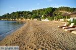 JustGreece.com Achladies | Skiathos Sporades | Greece  Photo 13 - Foto van JustGreece.com