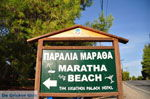 JustGreece.com Maratha beach near Koukounaries | Skiathos Sporades | Greece  Photo 1 - Foto van JustGreece.com