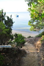 Maratha beach near Koukounaries | Skiathos Sporades | Greece  Photo 3 - Photo JustGreece.com