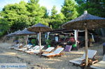 JustGreece.com Maratha beach near Koukounaries | Skiathos Sporades | Greece  Photo 12 - Foto van JustGreece.com