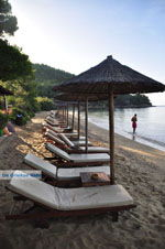 JustGreece.com Maratha beach near Koukounaries | Skiathos Sporades | Greece  Photo 14 - Foto van JustGreece.com