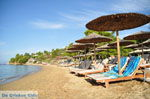 JustGreece.com Troulos beach | Skiathos Sporades | Greece  Photo 10 - Foto van JustGreece.com