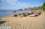Troulos beach | Skiathos Sporades | Greece  Photo 14 - Photo JustGreece.com