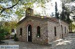 Aghia Paraskevi (Platanias beach)   Skiathos Sporades   Greece  Photo 20 - Photo JustGreece.com