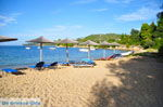 Aghia Paraskevi (Platanias beach) | Skiathos Sporades | Greece  Photo 22 - Photo JustGreece.com