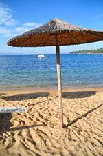 Aghia Paraskevi (Platanias beach) | Skiathos Sporades | Greece  Photo 24 - Photo JustGreece.com