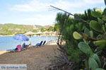 Aghia Paraskevi (Platanias beach) | Skiathos Sporades | Greece  Photo 31 - Photo JustGreece.com