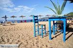Aghia Paraskevi (Platanias beach) | Skiathos Sporades | Greece  Photo 32 - Photo JustGreece.com
