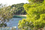 JustGreece.com Kanapitsa | Skiathos Sporades | Greece  Photo 2 - Foto van JustGreece.com