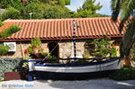 JustGreece.com Kanapitsa | Skiathos Sporades | Greece  Photo 5 - Foto van JustGreece.com
