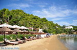JustGreece.com Kanapitsa | Skiathos Sporades | Greece  Photo 7 - Foto van JustGreece.com