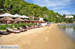 JustGreece.com Kanapitsa | Skiathos Sporades | Greece  Photo 8 - Foto van JustGreece.com