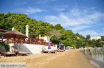 Kanapitsa | Skiathos Sporades | Greece  Photo 22 - Photo JustGreece.com