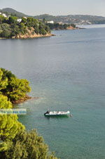 Kanapitsa | Skiathos Sporades | Greece  Photo 26 - Photo JustGreece.com