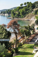 Vassilias | Skiathos Sporades | Greece  Photo 4 - Photo JustGreece.com