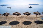 Vassilias | Skiathos Sporades | Greece  Photo 6 - Photo JustGreece.com