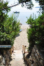 Vassilias | Skiathos Sporades | Greece  Photo 8 - Photo JustGreece.com
