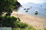 Megali Ammos (Ftelia) | Skiathos Sporades | Greece  Photo 3 - Photo JustGreece.com