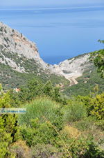 Nikotsara beach | Skiathos Sporades | Greece  Photo 1 - Photo JustGreece.com