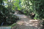 JustGreece.com Wandelpaden near monastery Kechria | Skiathos Sporades | Greece  Photo 3 - Foto van JustGreece.com