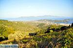 PanoramaPhoto Skiathos town | Skiathos Sporades | Greece  Photo 1 - Photo JustGreece.com