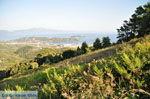 PanoramaPhoto Skiathos town | Skiathos Sporades | Greece  Photo 8 - Photo JustGreece.com