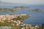 PanoramaPhoto Skiathos town | Skiathos Sporades | Greece  Photo 14 - Photo JustGreece.com