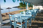 Achladies | Skiathos Sporades | Greece  Photo 15 - Photo JustGreece.com