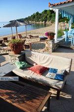 Maniatis Garden Achladies | Skiathos Sporades | Greece  Photo 3 - Photo JustGreece.com