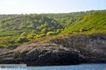 The green eastern coast of Skopelos | Sporades | Greece  Photo 2 - Photo JustGreece.com