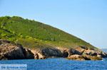 The green eastern coast of Skopelos | Sporades | Greece  Photo 5 - Photo JustGreece.com