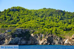 The green eastern coast of Skopelos | Sporades | Greece  Photo 6 - Photo JustGreece.com