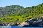 The green eastern coast of Skopelos | Sporades | Greece  Photo 7 - Photo JustGreece.com