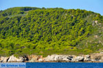 The green eastern coast of Skopelos | Sporades | Greece  Photo 8 - Photo JustGreece.com