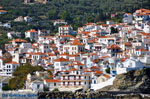 Skopelos town | Sporades | Greece  Photo 3 - Photo JustGreece.com