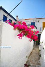 Skopelos town | Sporades | Greece  Photo 64 - Photo JustGreece.com