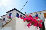 JustGreece.com Skopelos town | Sporades | Greece  Photo 65 - Foto van JustGreece.com