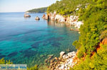 Stafylos | Skopelos Sporades | Greece  Photo 2 - Photo JustGreece.com