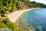JustGreece.com Stafylos | Skopelos Sporades | Greece  Photo 6 - Foto van JustGreece.com