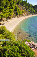 JustGreece.com Stafylos | Skopelos Sporades | Greece  Photo 7 - Foto van JustGreece.com