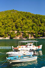 JustGreece.com Agnontas | Skopelos Sporades | Greece  Photo 9 - Foto van JustGreece.com