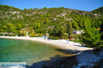 Limnonari near Agnontas | Skopelos Sporades | Greece  Photo 6 - Photo JustGreece.com