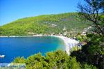 JustGreece.com Panormos Skopelos | Sporades | Greece  Photo 5 - Foto van JustGreece.com
