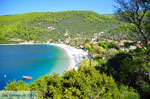 Panormos Skopelos | Sporades | Greece  Photo 8 - Photo JustGreece.com