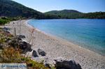 Panormos Skopelos | Sporades | Greece  Photo 9 - Photo JustGreece.com
